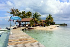 Bahamas Cruise Excursions and Shore Tours - Island Marketing Ltd